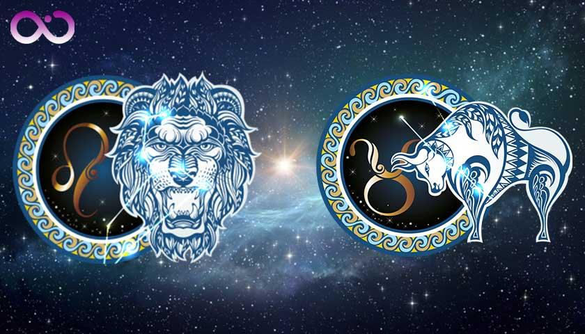 aslan-burcu_boga-burcu