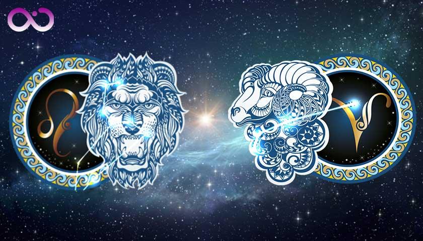 aslan-burcu_koc-burcu
