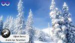 Oğlak Burcu Aralık Ayı Burç Yorumu