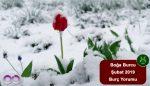 Boğa Burcu Şubat Ayı Yorumu